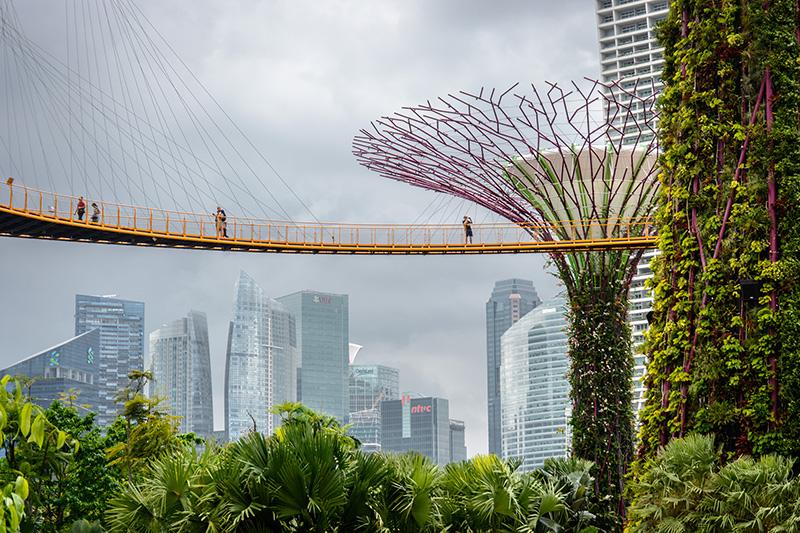 blog/images/2018/singapur/D71_5759.jpg